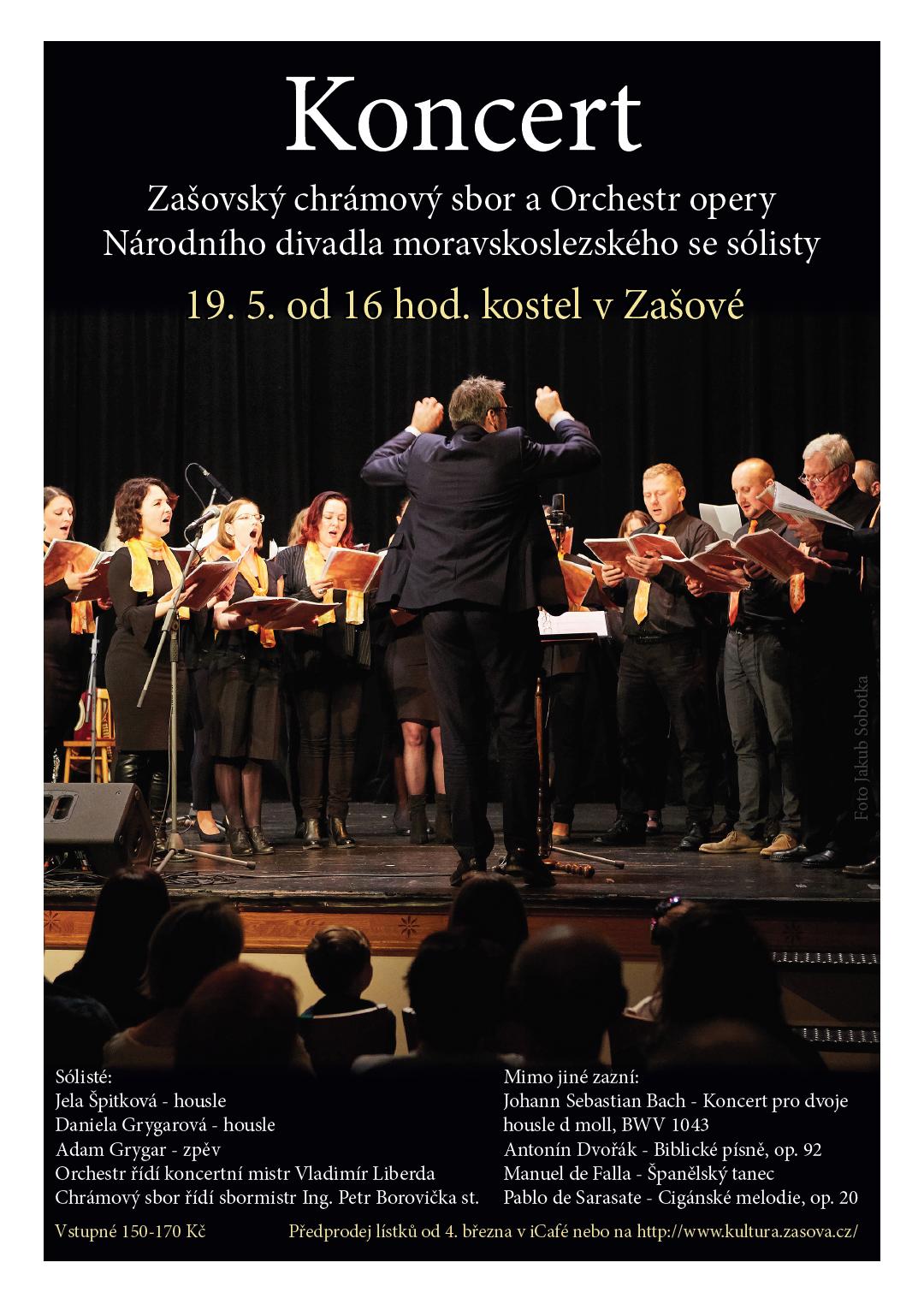 Koncert-zasova-plakat